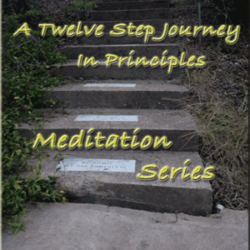 A Twelve Step Journey in Principles